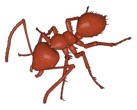 3D brown ant, illustration, vector on white background.