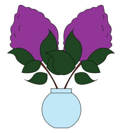 Beautiful drawing of lilac with leaves in flower pot, vector, color drawing or illustration. Reklamní fotografie - 132696514