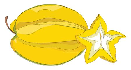 Yellow coloured fruit with the shape of a star, vector, color drawing or illustration.