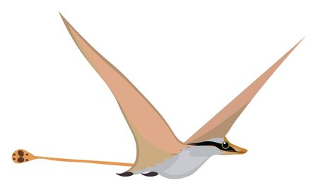 A bird with a yellowish beak with a long orange tail, vector, color drawing or illustration.
