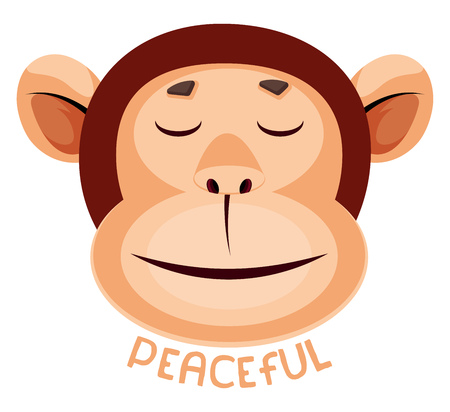 Monkey is feeling peacefull, illustration, vector on white background.