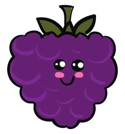 Blackberry is a small, soft black or dark purple fruit that grows on a plant called blackberry bush., vector, color drawing or illustration.