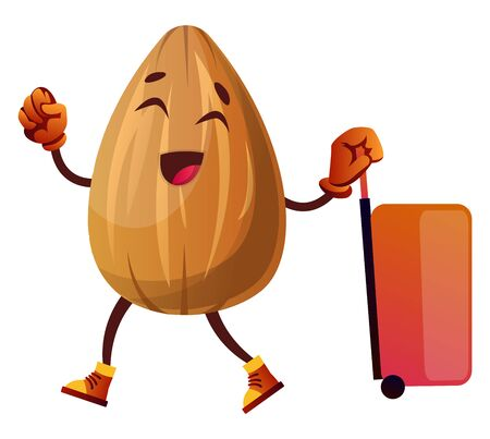 Almond is ready for travelling, illustration, vector on white background.
