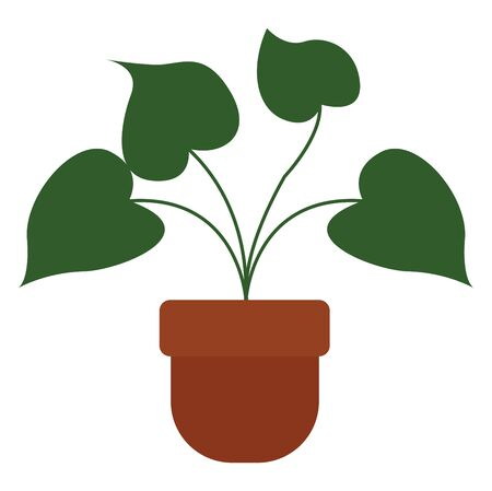 A colour illustration of green coloured plant in a pot, vector, color drawing or illustration. 일러스트