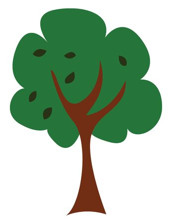 A tree with a single brown trunk and grown to a considerable height bears lateral branches with flat and wide leaves at some distance from the ground, vector, color drawing or illustration. Illustration