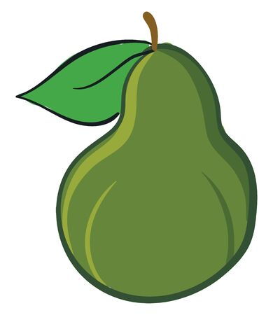 A green colored pear with a leaf and small stem., vector, color drawing or illustration.