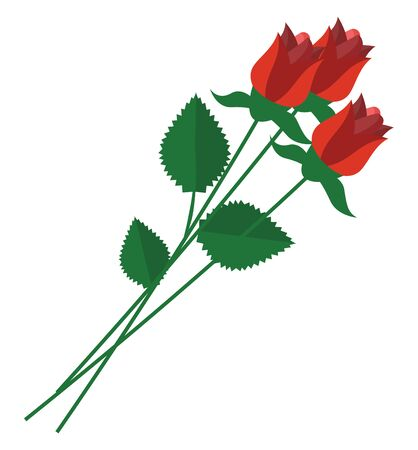 Bunch of red roses with beautiful green leaves and thin slender stem, vector, color drawing or illustration.