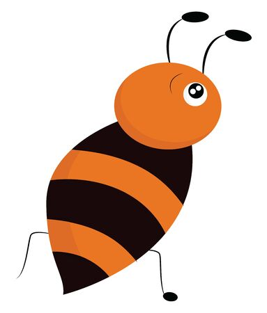 A honeybee is a bee that makes honey and can sting. It lives in large communities called hive., vector, color drawing or illustration.