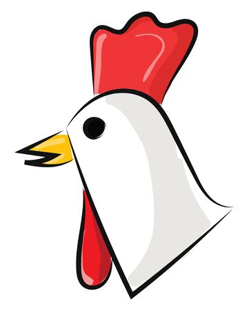 It is domestic fowl bred for flesh or eggs., vector, color drawing or illustration.