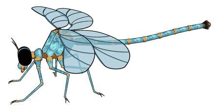 3D model of dragonfly, illustration, vector on white background.
