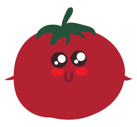 It is round red or yellow pulpy fruit eaten cooked as a vegetable or raw in salads., vector, color drawing or illustration.