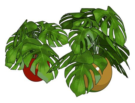 Green plants in pot, illustration, vector on white background.