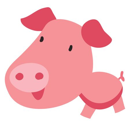 Pig with big head, illustration, vector on white background.