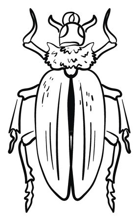Beetle drawing, illustration, vector on white background.