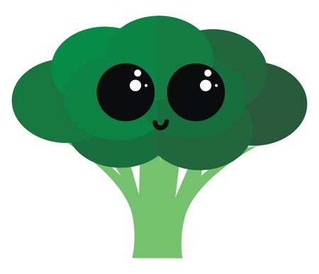 Cute broccoli, illustration, vector on white background.
