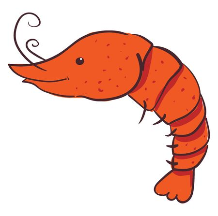 Happy red shrimp, illustration, vector on white background. Vectores