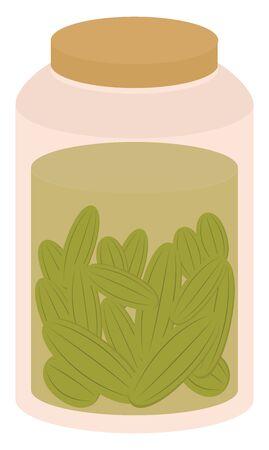 Pickles in jar, illustration, vector on white background.