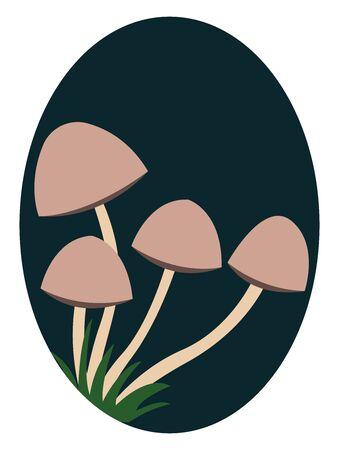 Small mushrooms, illustration, vector on white background. Illustration