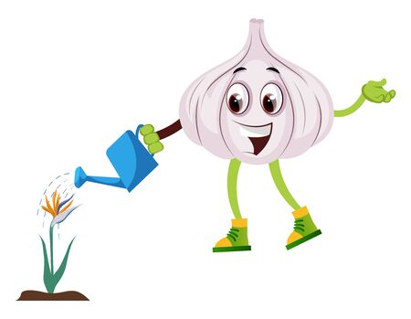 Garlic watering plant, illustration, vector on white background.