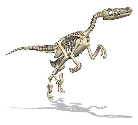 Dino-Skelett, Illustration, Vektor auf weißem Hintergrund.