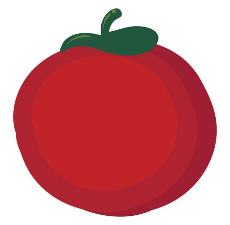 Flat tomato, illustration, vector on white background. Illustration