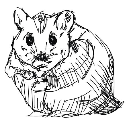 Hamster drawing, illustration, vector on white background.
