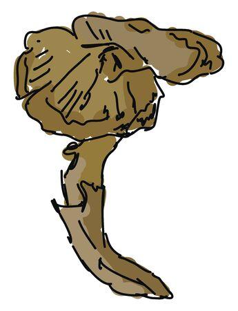 Mushroom, illustration, vector on white background.