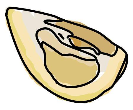 Pomelo cutter, illustration, vector on white background.