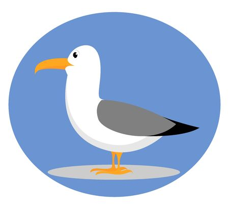 Seagull, illustration, vector on white background.