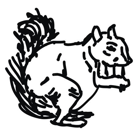 Squirrel drawing, illustration, vector on white background. 向量圖像
