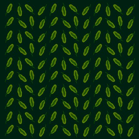 Spinach wallpaper, illustration, vector on white background.