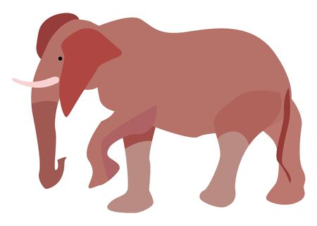 Big elephant, illustration, vector on white background.