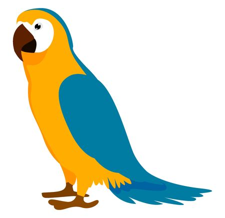 Parrot, illustration, vector on white background. 矢量图像