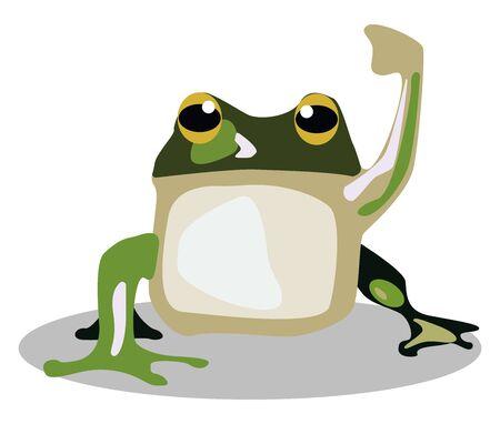 Green frog, illustration, vector on white background.