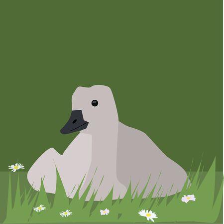 Goose in grass, illustration, vector on white background. Illustration