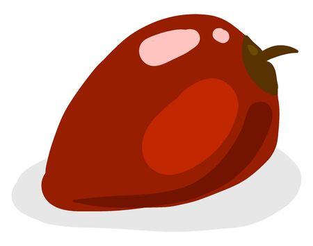 Red tamarillo, illustration, vector on white background.
