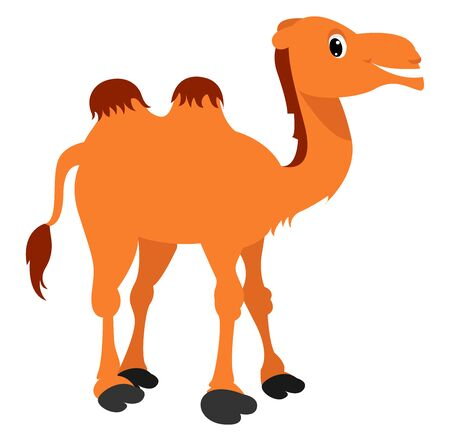 Happy camel, illustration, vector on white background.