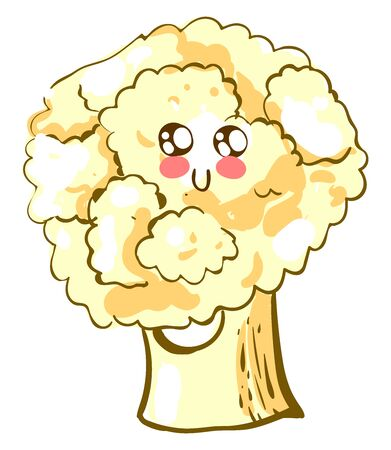 Cute cauliflower, illustration, vector on white background. 일러스트