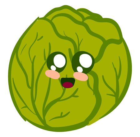 Cute cabbage, illustration, vector on white background. 向量圖像