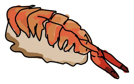 Cooked shrimp, illustration, vector on white background.