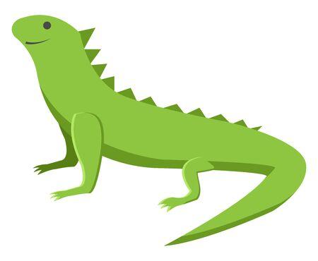 Green lizard, illustration, vector on white background. 向量圖像