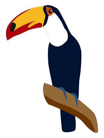 Tucan bird, illustration, vector on white background. Stock Illustratie