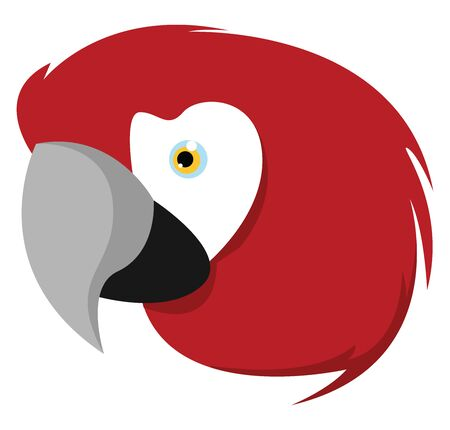 Ara parrot, illustration, vector on white background.