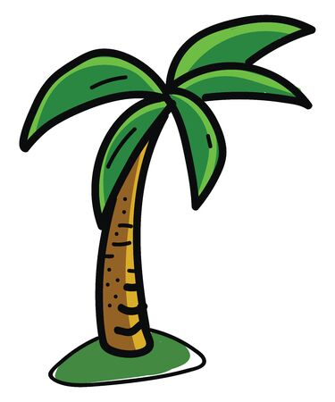 Palm tree, illustration, vector on white background. Ilustrace