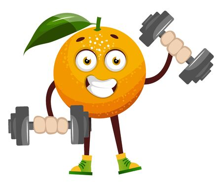 Orange with weights, illustration, vector on white background.