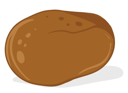 Sweet potato, illustration, vector on white background.