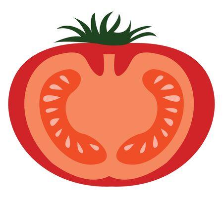 Half tomato, illustration, vector on white background.