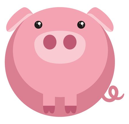 Cute fat pig, illustration, vector on white background.