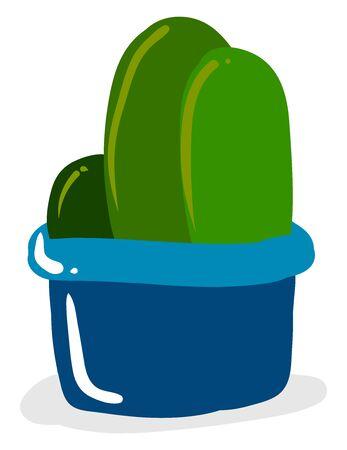 Cactuses in pot, illustration, vector on white background. Иллюстрация