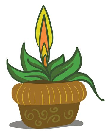 A beautifully grown saga palm with a flower, vector, color drawing or illustration. Çizim